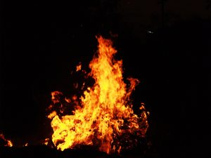 Arson and Criminal Damage.